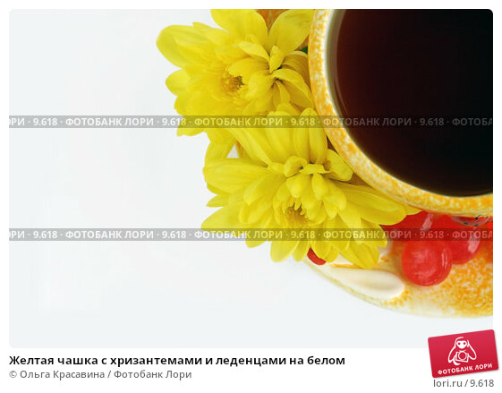 Желтая чашка с хризантемами и леденцами на белом, фото № 9618, снято 29 июня 2006 г. (c) Ольга Красавина / Фотобанк Лори