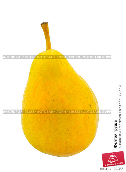 Желтая груша, фото № 129338, снято 3 марта 2007 г. (c) Валентин Мосичев / Фотобанк Лори