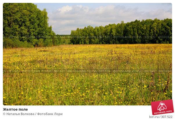 Желтое поле, фото № 307522, снято 17 мая 2008 г. (c) Наталья Волкова / Фотобанк Лори