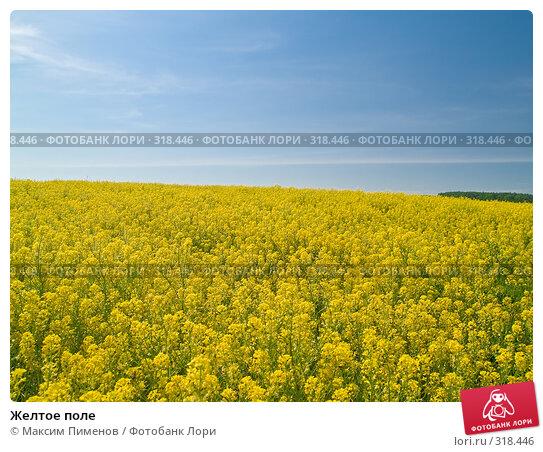 Желтое поле, фото № 318446, снято 22 мая 2007 г. (c) Максим Пименов / Фотобанк Лори