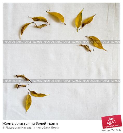 Желтые листья на белой ткани, фото № 50966, снято 19 июня 2006 г. (c) Лисовская Наталья / Фотобанк Лори