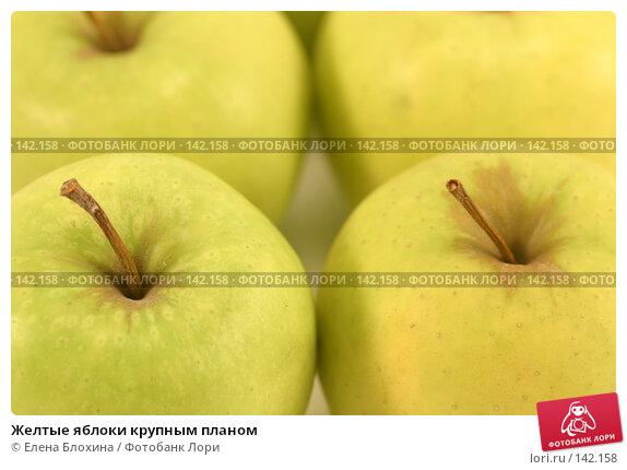 Желтые яблоки крупным планом, фото № 142158, снято 1 декабря 2007 г. (c) Елена Блохина / Фотобанк Лори