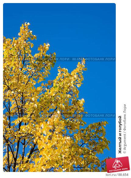 Желтый и голубой, фото № 88654, снято 20 сентября 2007 г. (c) Argument / Фотобанк Лори