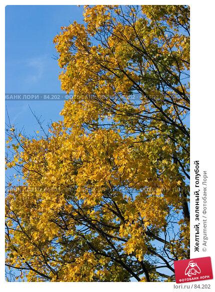 Купить «Желтый, зеленый, голубой», фото № 84202, снято 20 октября 2006 г. (c) Argument / Фотобанк Лори
