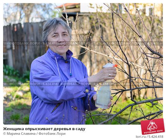 Купить «Женщина опрыскивает деревья в саду», фото № 5424418, снято 2 мая 2013 г. (c) Марина Славина / Фотобанк Лори