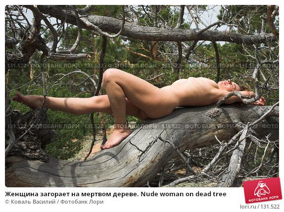 Женщина загорает на мертвом дереве. Nude woman on dead tree, фото № 131522, снято 29 мая 2007 г. (c) Коваль Василий / Фотобанк Лори