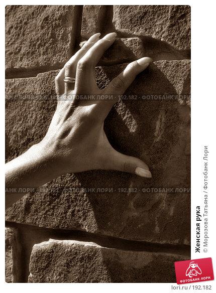 Женская рука, фото № 192182, снято 22 августа 2004 г. (c) Морозова Татьяна / Фотобанк Лори