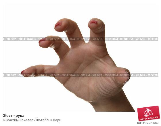Жест - рука, фото № 78682, снято 30 июля 2007 г. (c) Максим Соколов / Фотобанк Лори