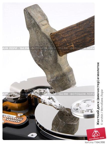 Жесткий диск (винчестер) и молоток, фото № 164998, снято 27 декабря 2007 г. (c) urchin / Фотобанк Лори