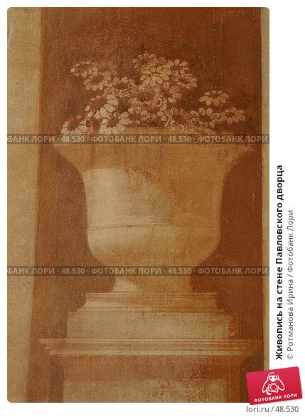 Живопись на стене Павловского дворца, фото № 48530, снято 20 мая 2007 г. (c) Ротманова Ирина / Фотобанк Лори