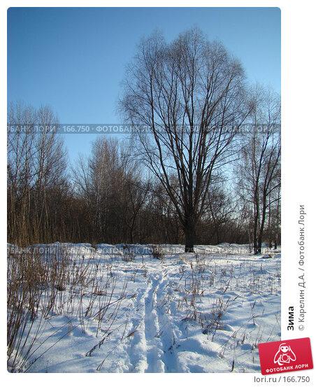 Зима, фото № 166750, снято 3 января 2008 г. (c) Карелин Д.А. / Фотобанк Лори