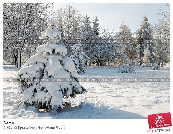 Зима, фото № 179066, снято 18 ноября 2007 г. (c) Юрий Брыкайло / Фотобанк Лори