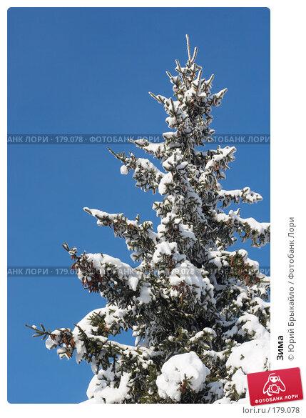 Зима, фото № 179078, снято 18 ноября 2007 г. (c) Юрий Брыкайло / Фотобанк Лори