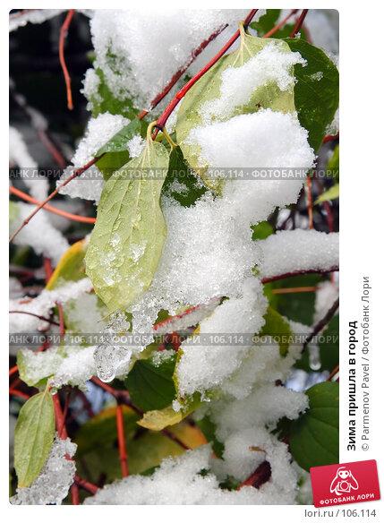 Зима пришла в город, фото № 106114, снято 16 октября 2007 г. (c) Parmenov Pavel / Фотобанк Лори