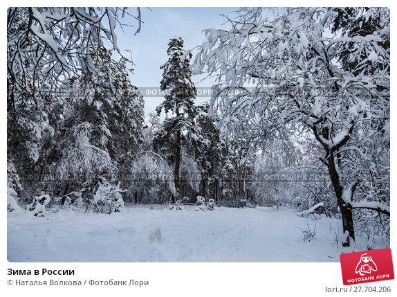 Купить «Зима в России», фото № 27704206, снято 9 февраля 2018 г. (c) Наталья Волкова / Фотобанк Лори