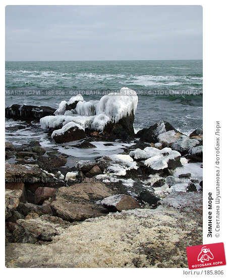 Зимнее море, фото № 185806, снято 8 января 2006 г. (c) Светлана Шушпанова / Фотобанк Лори
