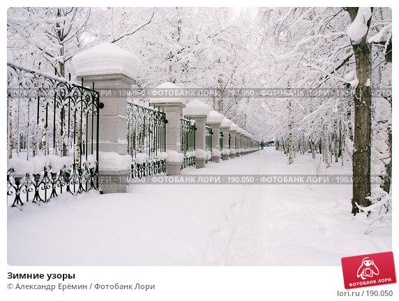 Зимние узоры, фото № 190050, снято 19 января 2008 г. (c) Александр Ерёмин / Фотобанк Лори