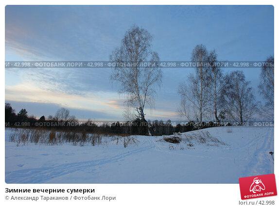 Зимние вечерние сумерки, эксклюзивное фото № 42998, снято 24 мая 2017 г. (c) Александр Тараканов / Фотобанк Лори
