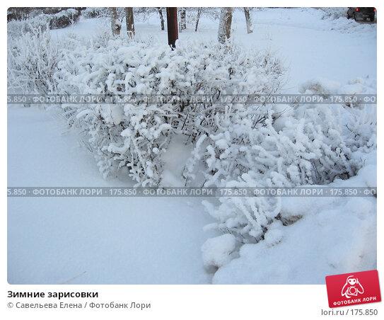 Зимние зарисовки, фото № 175850, снято 10 января 2008 г. (c) Cавельева Елена / Фотобанк Лори