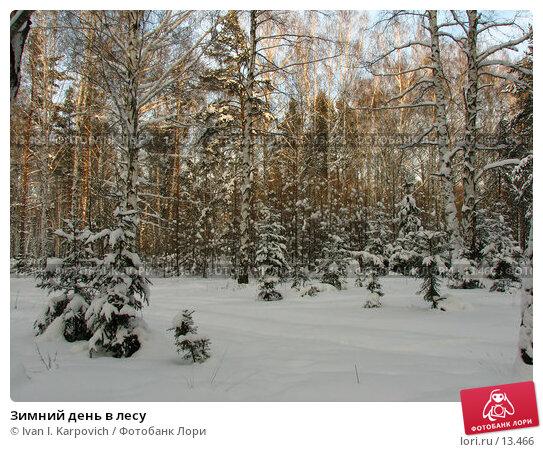 Купить «Зимний день в лесу», фото № 13466, снято 5 февраля 2006 г. (c) Ivan I. Karpovich / Фотобанк Лори