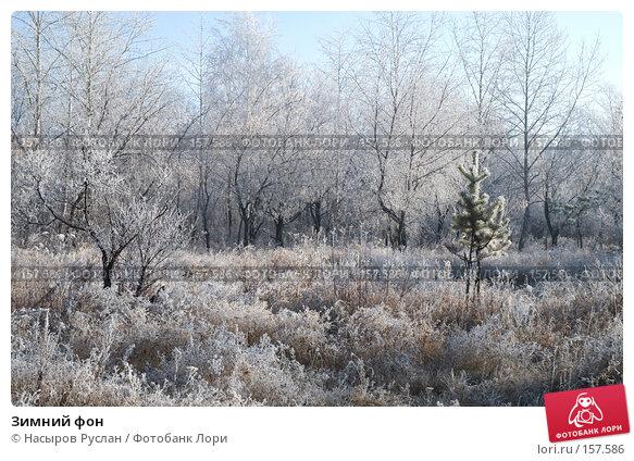 Купить «Зимний фон», фото № 157586, снято 2 ноября 2007 г. (c) Насыров Руслан / Фотобанк Лори