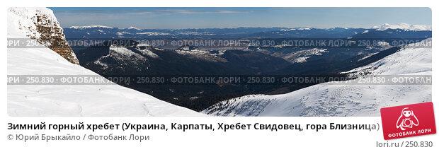Зимний горный хребет (Украина, Карпаты, Хребет Свидовец, гора Близница), фото № 250830, снято 23 июля 2017 г. (c) Юрий Брыкайло / Фотобанк Лори