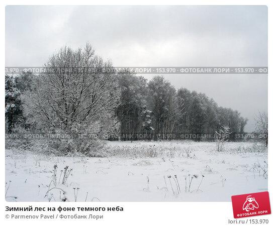 Зимний лес на фоне темного неба, фото № 153970, снято 15 февраля 2007 г. (c) Parmenov Pavel / Фотобанк Лори