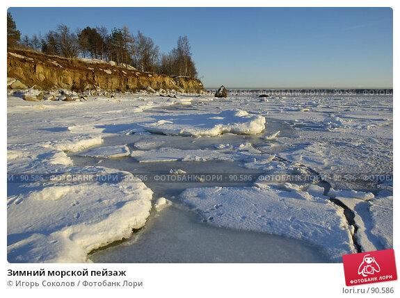 Зимний морской пейзаж, фото № 90586, снято 27 мая 2017 г. (c) Игорь Соколов / Фотобанк Лори
