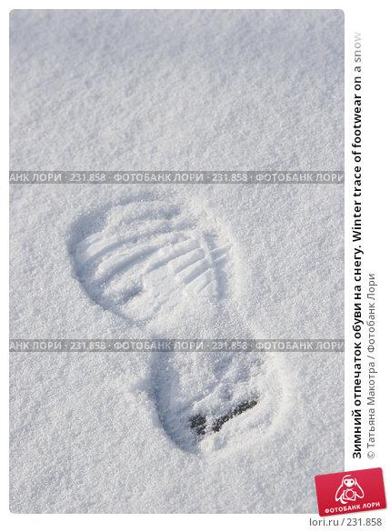 Зимний отпечаток обуви на снегу. Winter trace of footwear on a snow, фото № 231858, снято 14 февраля 2008 г. (c) Татьяна Макотра / Фотобанк Лори