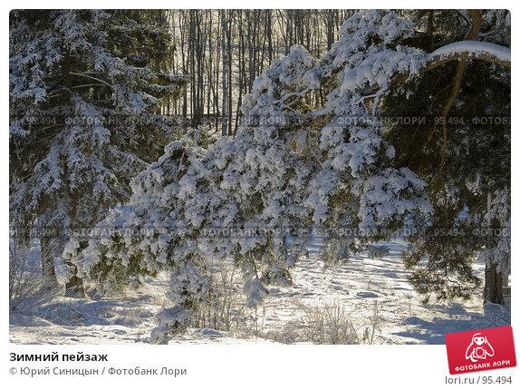 Зимний пейзаж, фото № 95494, снято 12 февраля 2007 г. (c) Юрий Синицын / Фотобанк Лори