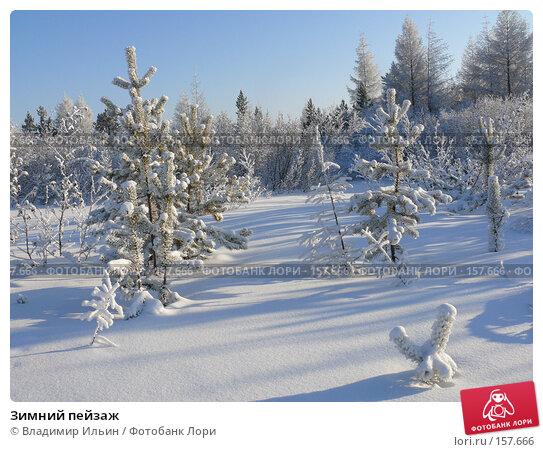 Зимний пейзаж, фото № 157666, снято 23 декабря 2007 г. (c) Владимир Ильин / Фотобанк Лори