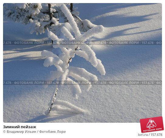 Купить «Зимний пейзаж», фото № 157678, снято 23 декабря 2007 г. (c) Владимир Ильин / Фотобанк Лори