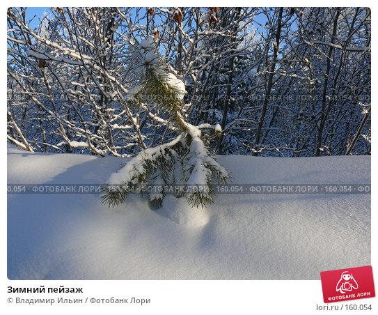 Зимний пейзаж, фото № 160054, снято 23 декабря 2007 г. (c) Владимир Ильин / Фотобанк Лори