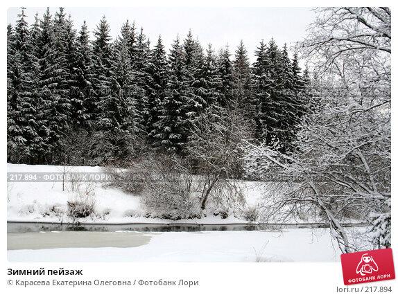 Купить «Зимний пейзаж», фото № 217894, снято 3 февраля 2008 г. (c) Карасева Екатерина Олеговна / Фотобанк Лори