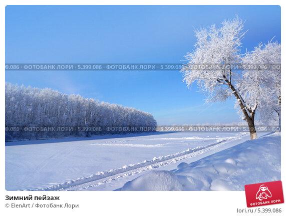 Зимний пейзаж, фото № 5399086, снято 6 февраля 2009 г. (c) ElenArt / Фотобанк Лори