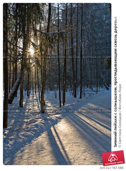 Зимний пейзаж с солнышком, проглядывающим сквозь деревья, фото № 167586, снято 7 января 2008 г. (c) Светлана Силецкая / Фотобанк Лори