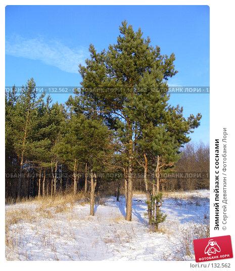 Зимний пейзаж с соснами, фото № 132562, снято 25 ноября 2007 г. (c) Сергей Девяткин / Фотобанк Лори