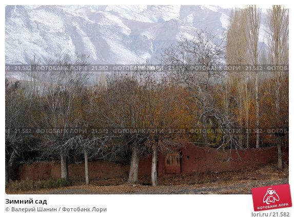 Зимний сад, фото № 21582, снято 23 ноября 2006 г. (c) Валерий Шанин / Фотобанк Лори