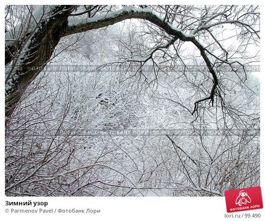 Зимний узор, фото № 99490, снято 15 февраля 2007 г. (c) Parmenov Pavel / Фотобанк Лори