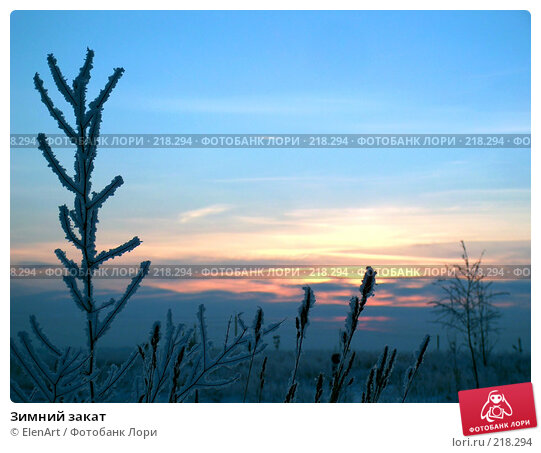 Зимний закат, фото № 218294, снято 25 февраля 2017 г. (c) ElenArt / Фотобанк Лори