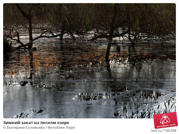 Зимний закат на лесном озере, фото № 130558, снято 27 ноября 2007 г. (c) Екатерина Соловьева / Фотобанк Лори