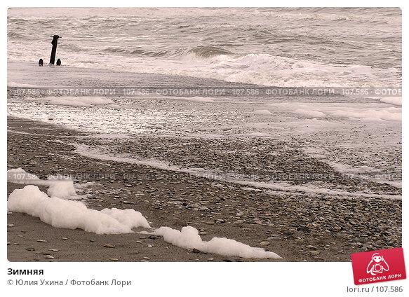 Зимняя, фото № 107586, снято 22 сентября 2017 г. (c) Юлия Ухина / Фотобанк Лори