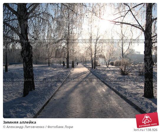 Зимняя аллейка, фото № 138926, снято 28 ноября 2007 г. (c) Александр Литовченко / Фотобанк Лори