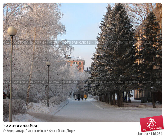 Зимняя аллейка, фото № 146254, снято 8 декабря 2007 г. (c) Александр Литовченко / Фотобанк Лори