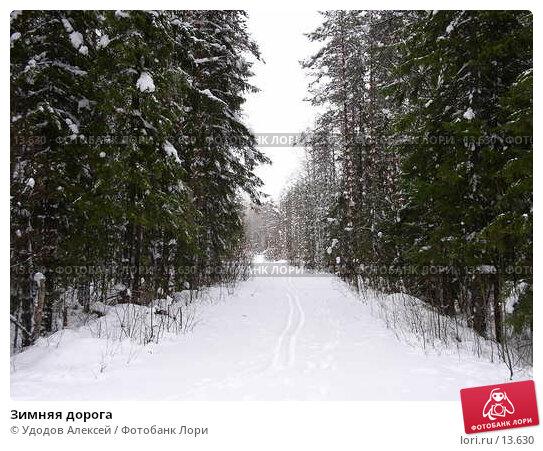 Купить «Зимняя дорога», фото № 13630, снято 20 апреля 2018 г. (c) Удодов Алексей / Фотобанк Лори