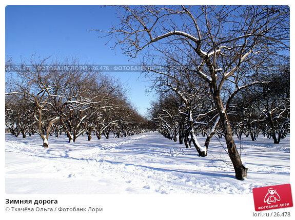 Зимняя дорога, фото № 26478, снято 11 февраля 2007 г. (c) Ткачёва Ольга / Фотобанк Лори