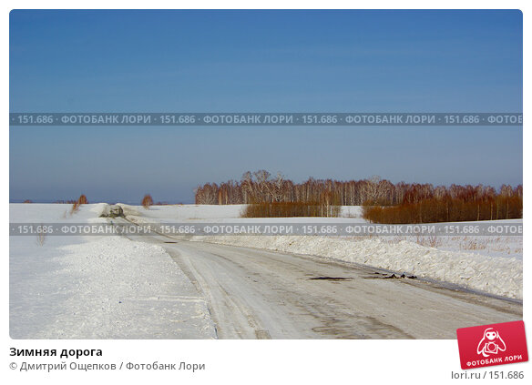 Зимняя дорога, фото № 151686, снято 18 марта 2007 г. (c) Дмитрий Ощепков / Фотобанк Лори