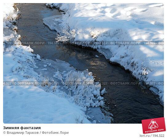 Купить «Зимняя фантазия», фото № 194322, снято 4 января 2008 г. (c) Владимир Тарасов / Фотобанк Лори