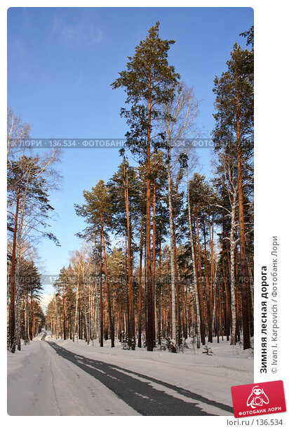 Зимняя лесная дорога, фото № 136534, снято 24 февраля 2007 г. (c) Ivan I. Karpovich / Фотобанк Лори