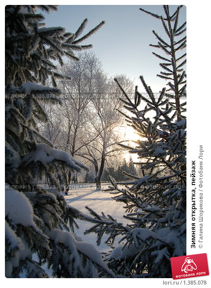 Купить «Зимняя открытка, пейзаж», эксклюзивное фото № 1385078, снято 7 января 2010 г. (c) Галина Шорикова / Фотобанк Лори